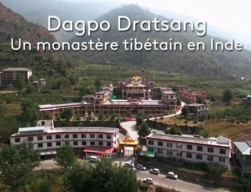 Sagesse Bouddhistes: Documentaire sur le Monastère de Dagpo Dratsang