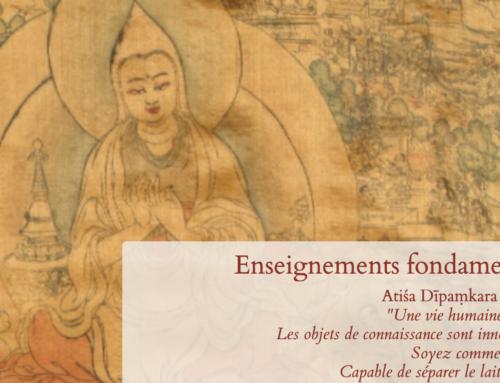 Dharmapedia: Le nouveau site sur le Bouddhisme